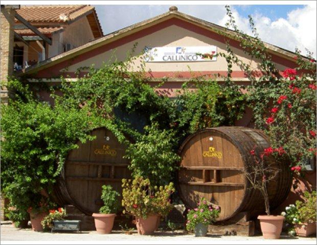 Callinico Winery in Zakynthos,Zante