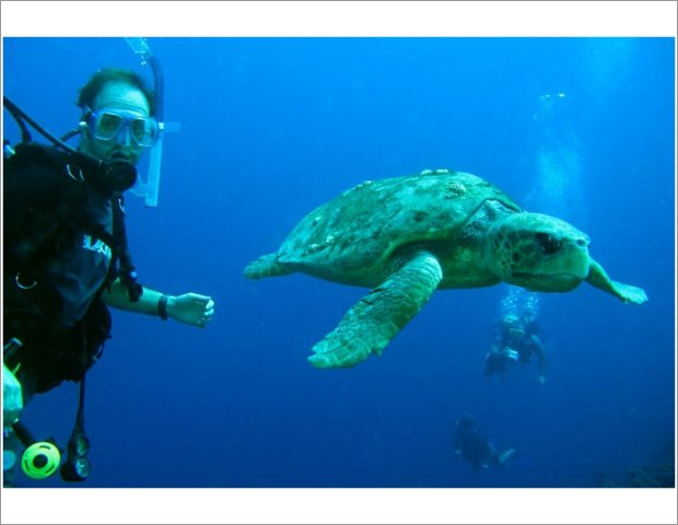 Book with us and enjoy diving lessons!